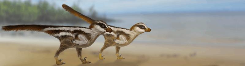 Найдены самые маленькие следы динозавров