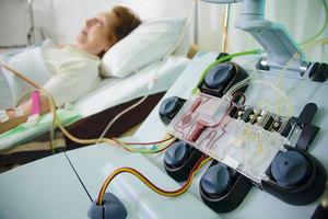 Чистая кровь — залог здоровья