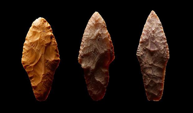 В Подмосковье обнаружили некрополь возрастом 4,5 тысячи лет