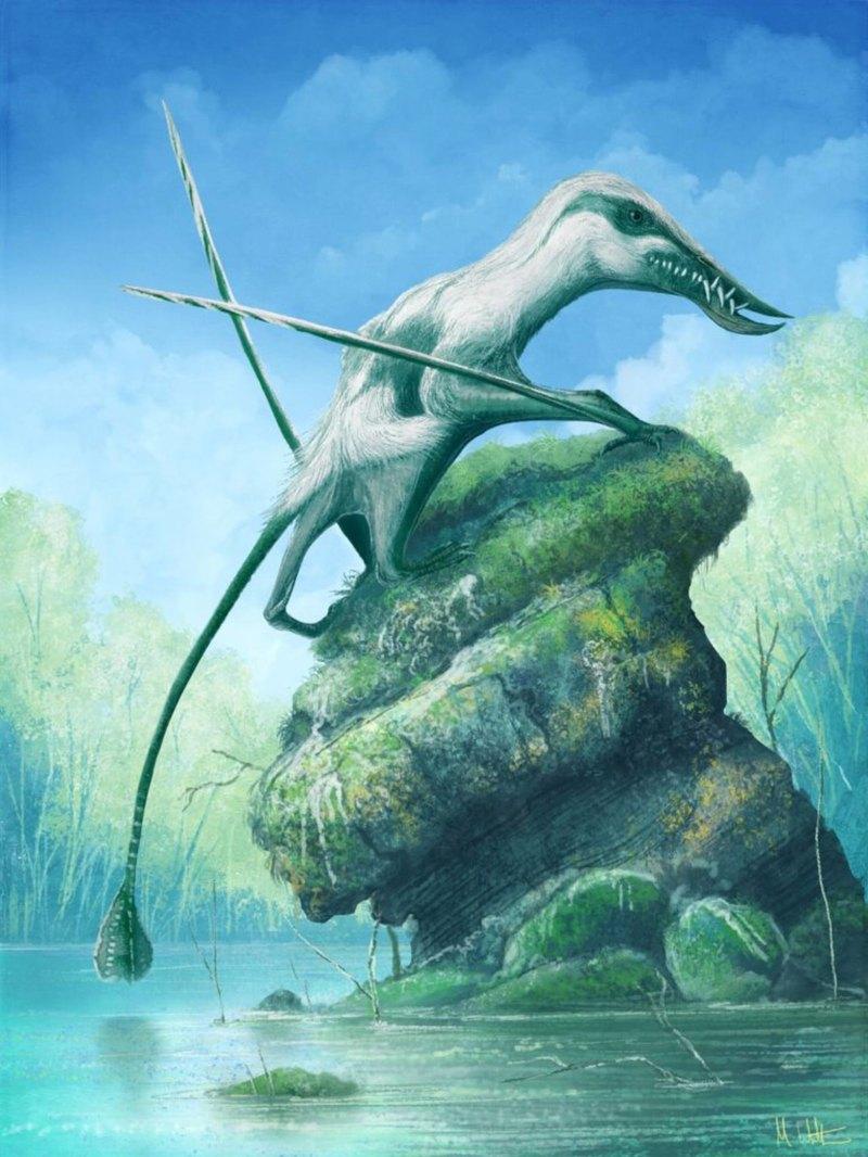 Найден новый птерозавр юрского периода