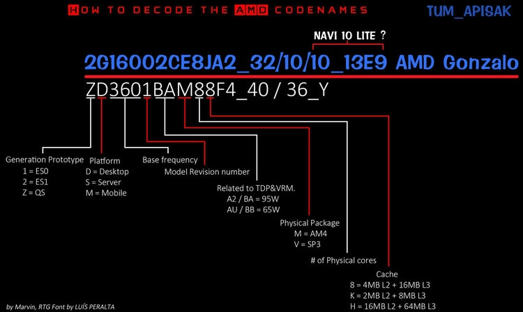 AMD Gonzalo: консольная SoC с восемью ядрами Zen 2 и графикой Navi