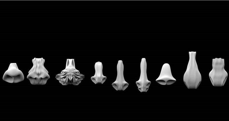 Как могли бы выглядеть носы марсиан