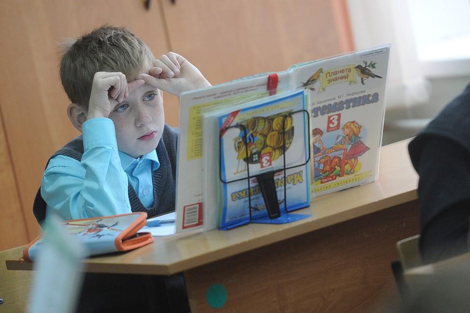 Как обществознание может помочь школьникам в будущем?