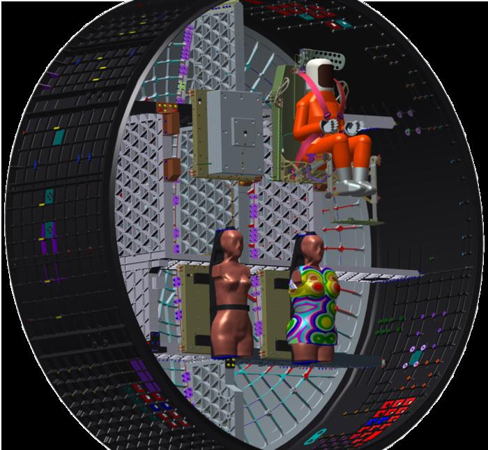 Уровень радиации вблизи Луны измерят с помощью женских манекенов